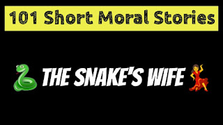 The Snake's Wife