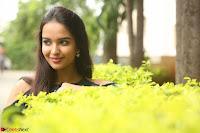 Poojita Super Cute Smile in Blue Top black Trousers at Darsakudu press meet ~ Celebrities Galleries 085.JPG