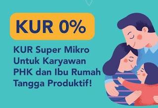 KUR Super Mikro Bunga 0% Untuk Korban PHK Dan Ibu Rumah Tangga Kreatif, Apa Saja Syaratnya?