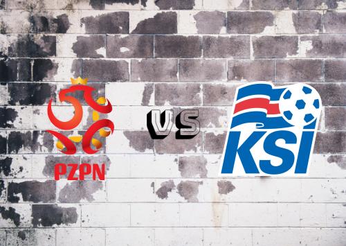Polonia vs Islandia  Resumen