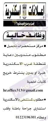 وظائف الاسكندرية