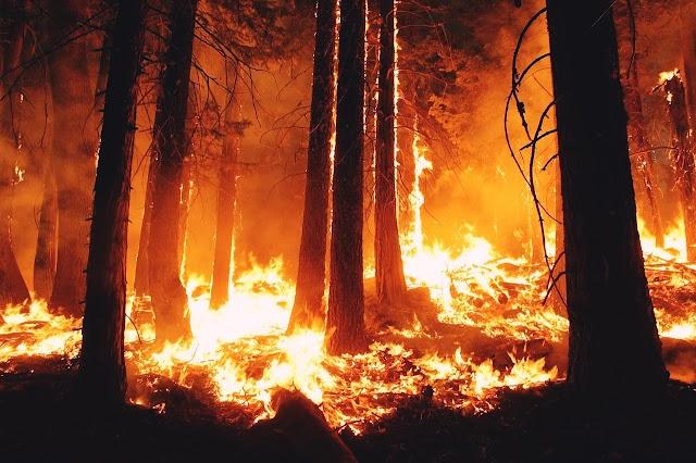 Fire of Australia