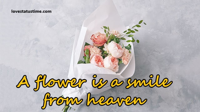 cute love flower quotes for instagram Caption