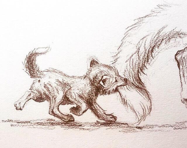 06-The-wolf-cub-Farbe-Und-Fabeln-www-designstack-co