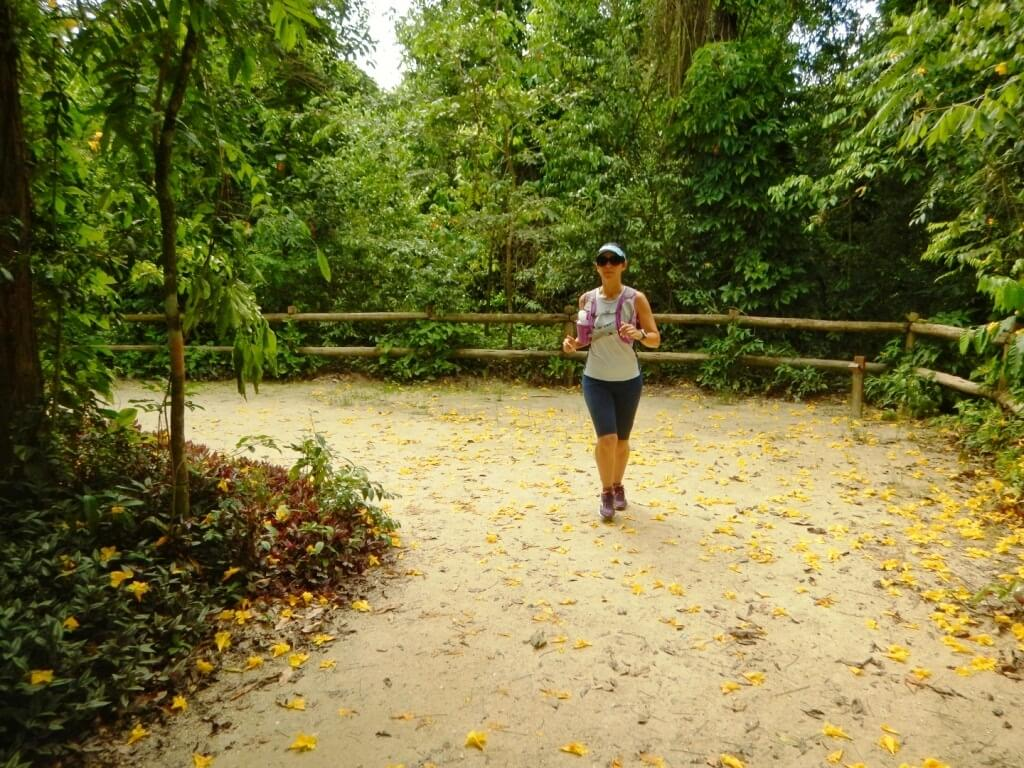 Bosque da Freguesia Atividades
