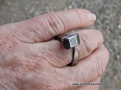 prairie diamond ring at Empire Mine State Historic Park in Grass Valley, California