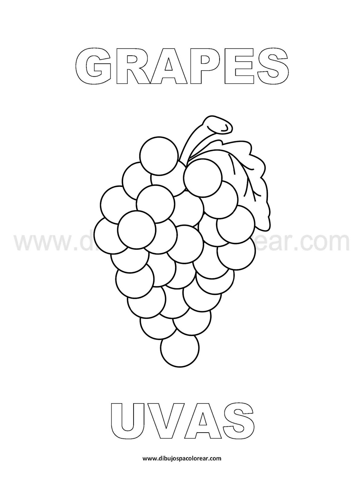 Dibujos Inglés Español Con U Uvas Grapes