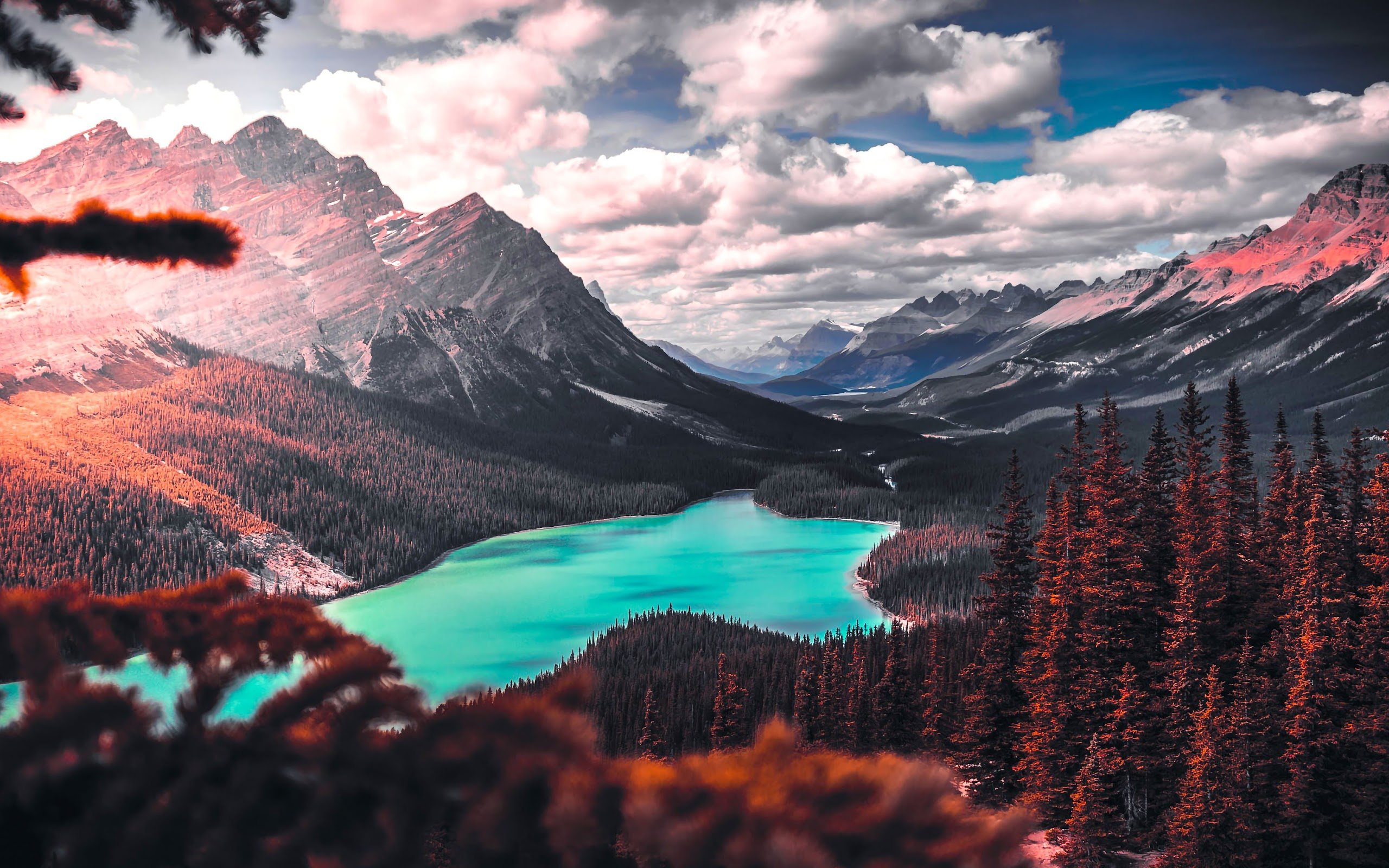 Mountain Lake Nature Forest Landscape ...