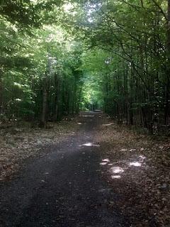 Sentier à Notre-Dame-de-l'Ile-Perrot