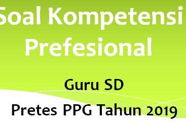 Soal Latihan Kompetensi Profesional Guru SD Pretest PPG Tahun 2019 Bagian II