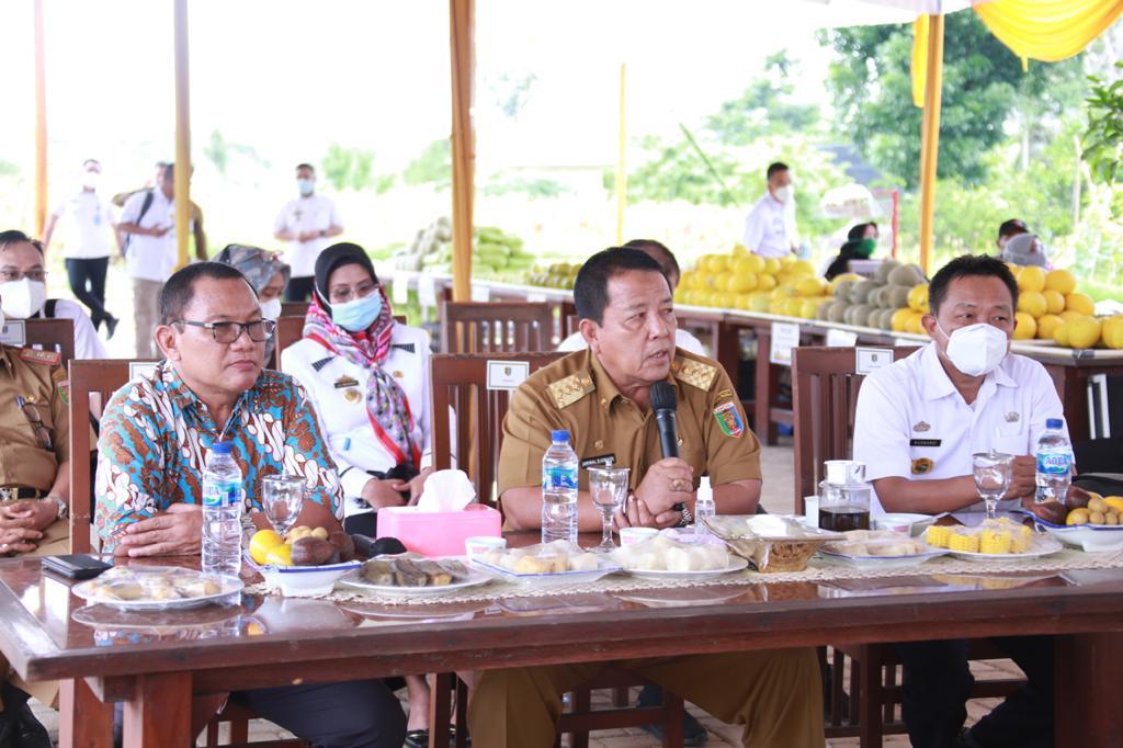 Temu Panitia Rembuk KTNA se-Provinsi Lampung, Gubernur Arinal Dorong Petani dan Nelayan Bekerja Profesional dan Dapat Bersinergi dengan Pemerintah dan Swasta