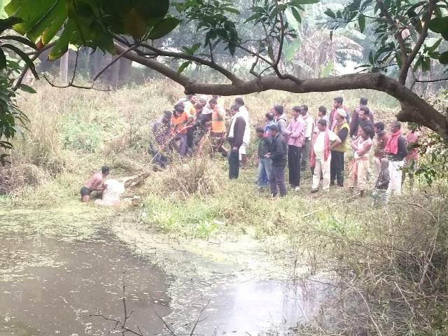 नवकरही के तालाब में डूबने से सांढ की मौत