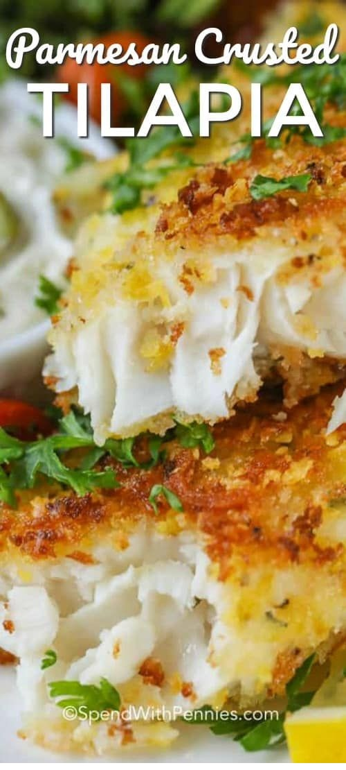 Crispy Parmesan Tilapia