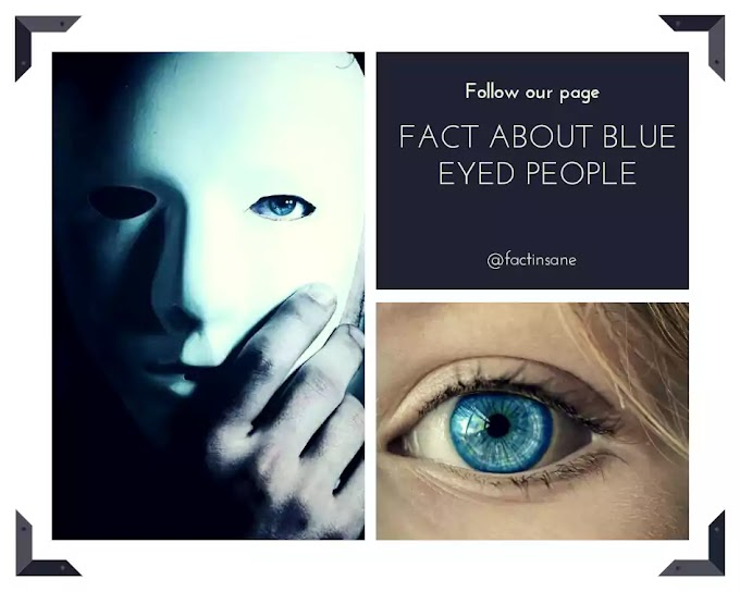 Fact About Blue Eyed People