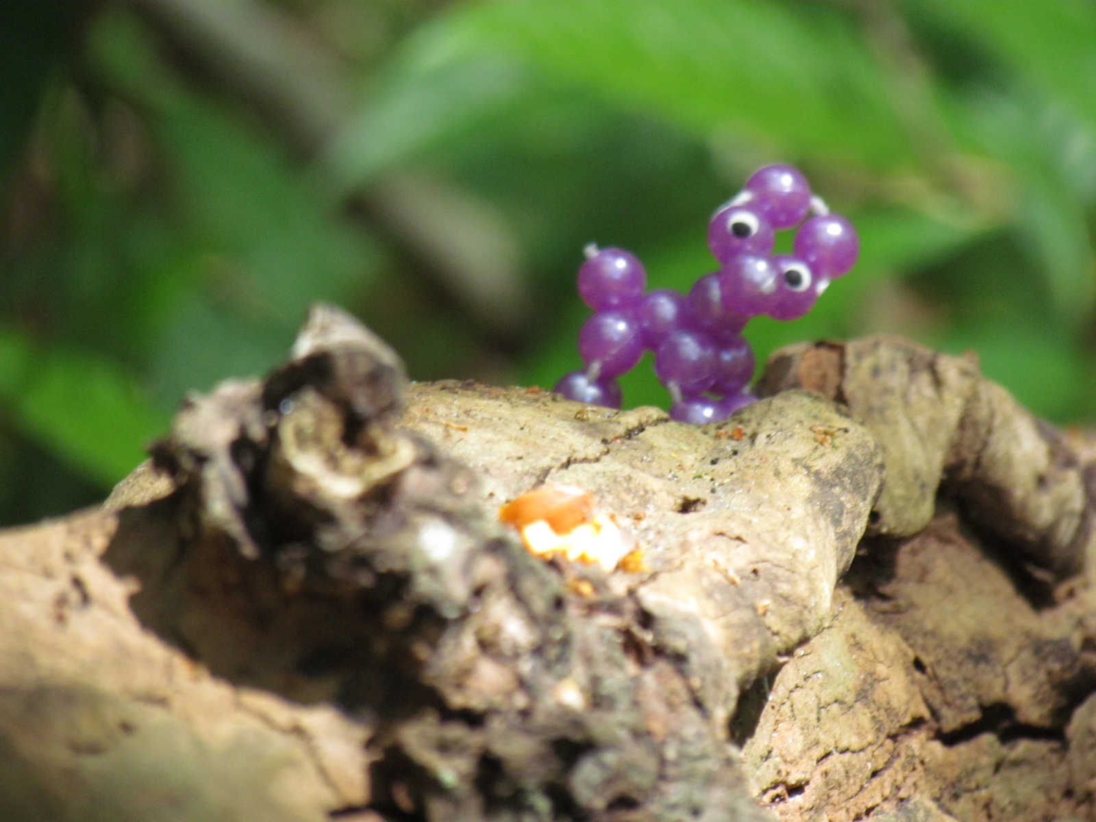 A tiny, purple gemstone poodle dog toy in the forest on a wooden log in mother nature in Florida