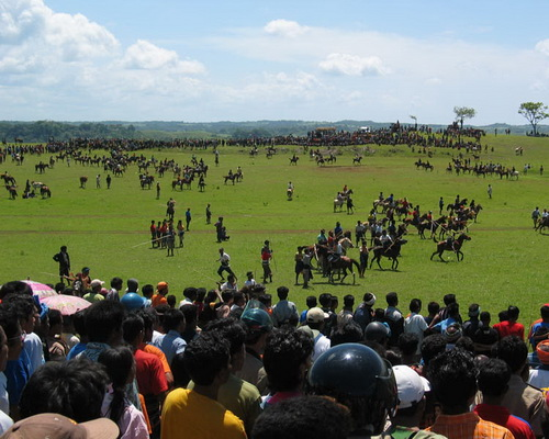 Tinuku.com Travel Pasola war games Marapu religious knights in Southwest Sumba after Nyale worm feast