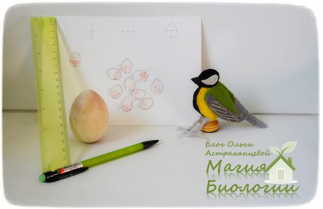 пальчиковые-игрушки-большая-синица-яйца-дневник-натуралиста-линейка