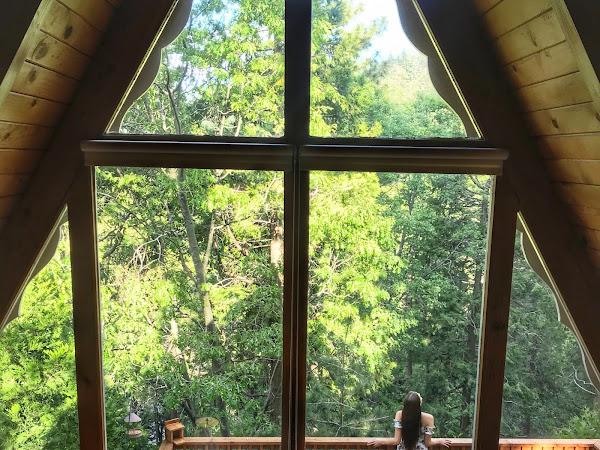 PLACES // Toad Haven Cottage - Crestline, CA