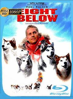 Rescate En La Antartida (Eight Below) [2006] HD [1080p] Latino [GoogleDrive] PGD