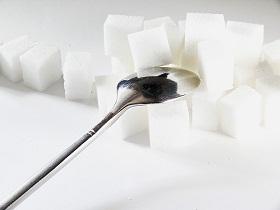 تجنب السكر يقي من تراكم الدهون في البطن و في الكبد
