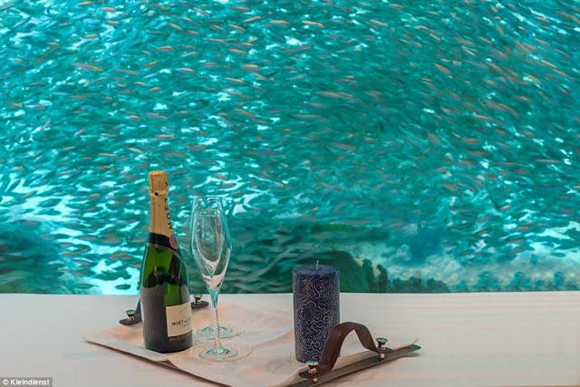 The over 70 billion luxury villa in Dubai.