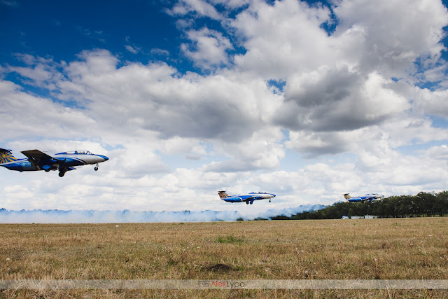 L-29 fly