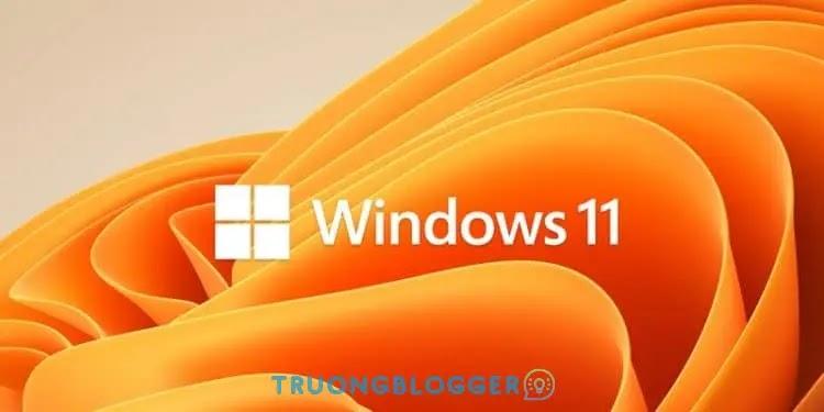 Tải về Windows 11 Pro 21H2 Build 22000.168 Non-TPM 2.0 Compliant (x64)