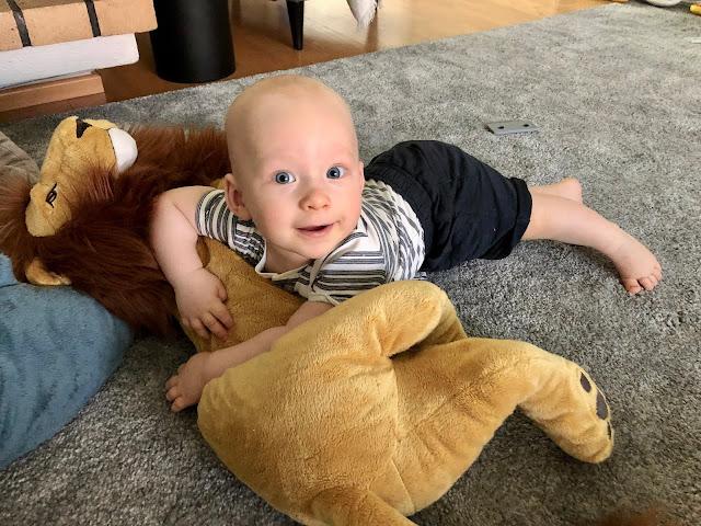 Noel rakastaa ryömiä kaiken yli. Yksi rakkaimmista ylitettävistä on leijona, jonka kanssa hän painii muutenkin paljon. Olen varma, että tästä jättiläislelusta tulee meillä se, joka pitää olla aina jokapaikassa mukana