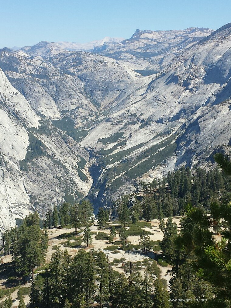 View of the Yosemite Mountains