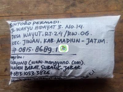 Benih padi yang dibeli   BINTORO PERMADI Madiun, Jatim.  (Setelah packing karung ).