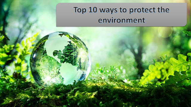 10 Ways To Protect The Environment