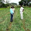 Indian Agriculture: Kerala: Precision farming gains currency