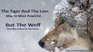 The Lion And The Tiger May Be More Powerful But The Wolf Does Not Perform In The Circus