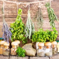 Dr  Oduduwa Herbal Healing Network: Herbal Cure for HSV is real and
