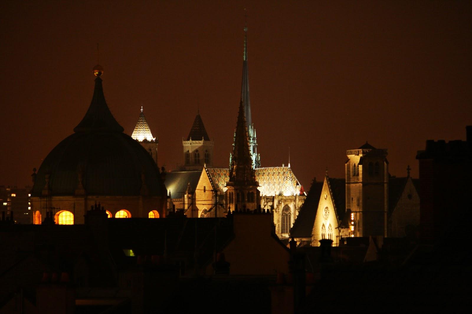 Toits de Dijon la nuit