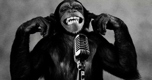 Funny-monkey-singing-wallpaper-android%25255b1%25255d-593x356