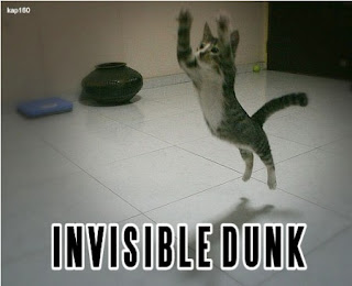 Invisible Dunk, funny cat, cat slam dunk, funny cat meme, cat meme