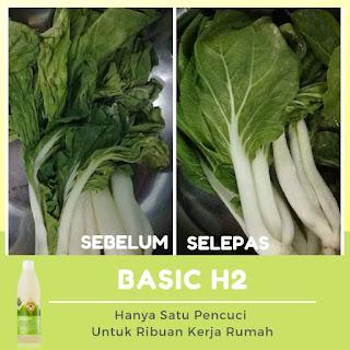 Testimoni Basic H shaklee, Testimoni Basic H, Bolehkah sayur segar dengan basic h,  Testimoni sayur segar rendam dalam basic h shaklee