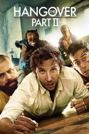 Download The Hangover Part II (2011) Dual Audio {Hindi-English} Movie 480p   720p BluRay 400MB   1GB
