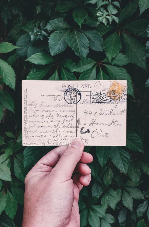 Vintage Alberta Postcard