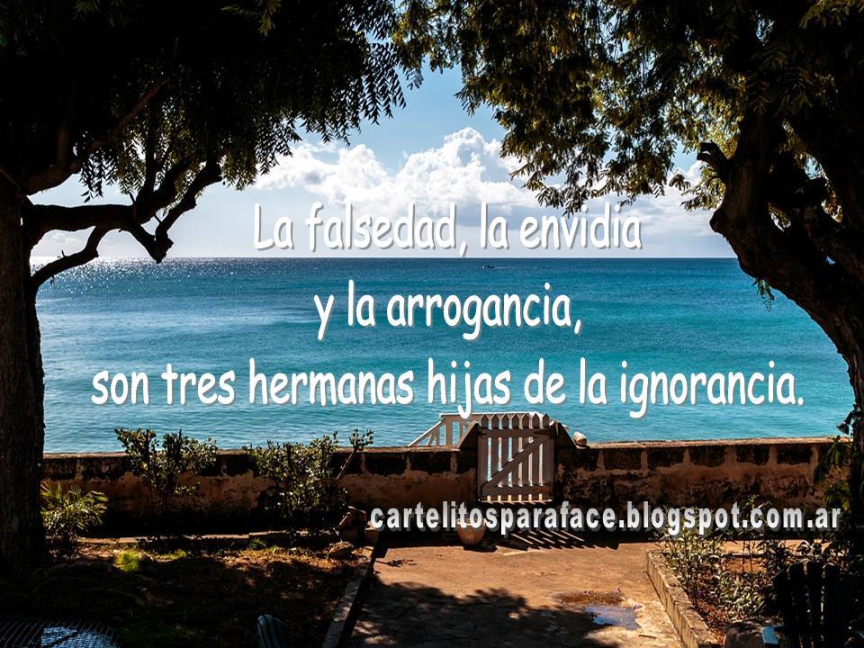 Frases Cartelitos Para Face La Falsedad La Envidia Y La