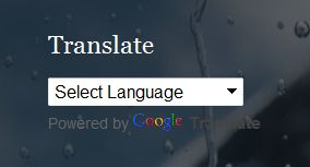 Google Translate widget