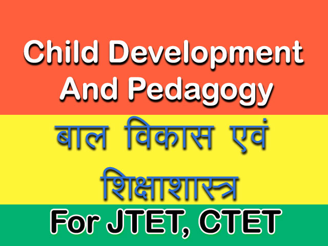 Child Development and Pedagogy PDF Notes in Hindi.