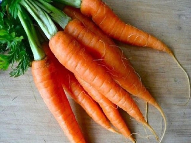 carrot-benefit-for-health-fitness