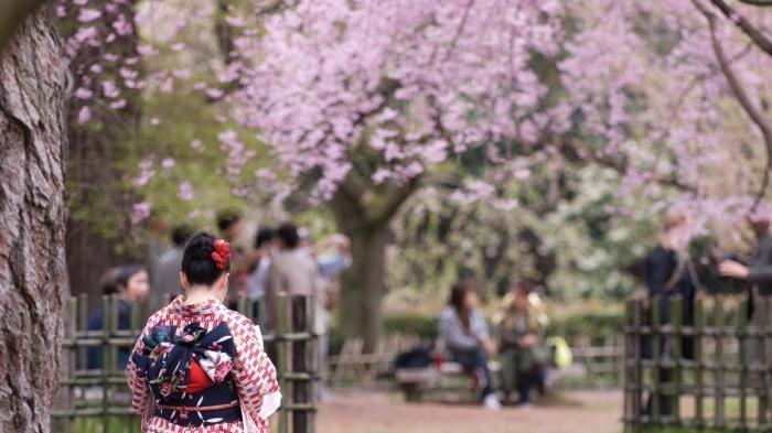 Fakta Unik dan Menarik Jepang