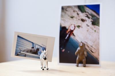 Porta retratos con animales de plastico