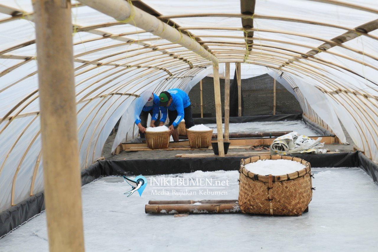 Menteri Susi Dijadwalkan Akan Resmikan Kampung Garam di Kebumen