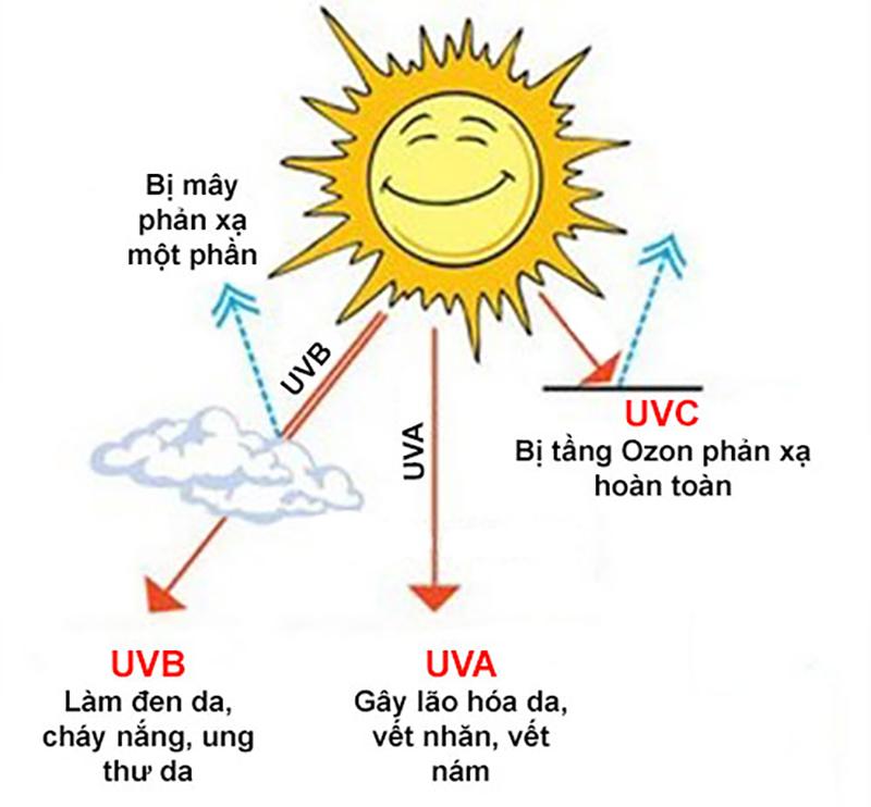 Các tia UV gây hại