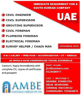South Korean Company in UAE