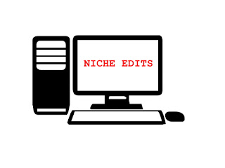 What Is Niche Edits